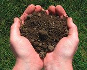Грунт,  почвогрунт (сертификат МЭР)