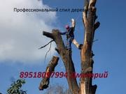 Спил деревьев в Челябинске любой сложности