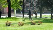 Опил деревьев,  покос травы триммером в Липецке.