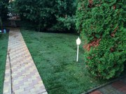 Озеленение рулонным и посевным газоном с гарантией 5 лет